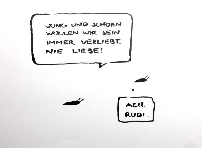 13_34_Liebeschnecken