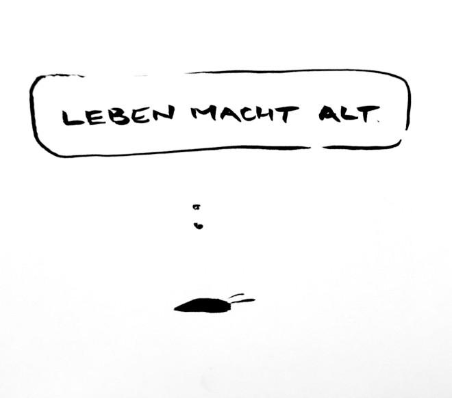 16_045_leben